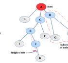 tree terminologies
